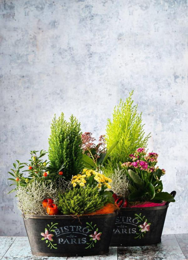 I want to order flowers online in Dublin