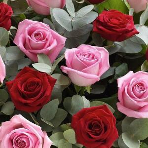 pink and red roses flower delivery Dublin